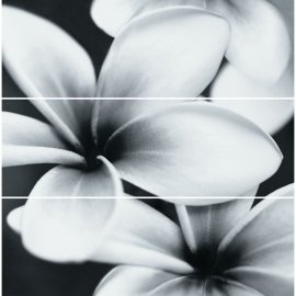 Płytka ścienna kompozycja PRET A PORTER grey flower glossy 75x75 gat. I