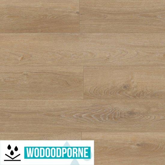 Panele winylowe LVT Korner Floor SPC Dąb Prestige 501660