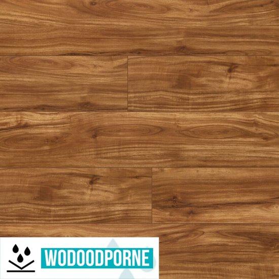 Panele winylowe LVT Korner Floor SPC Dąb Drzewo Teakowe 501627