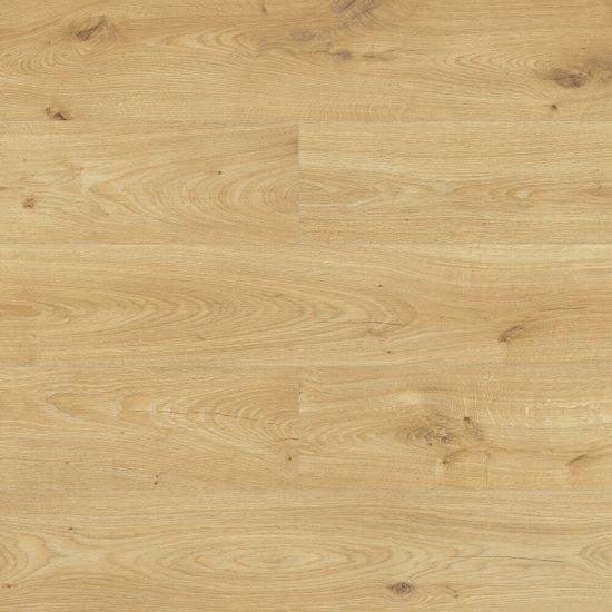 Panele podłogowe SWISS KRONO Dąb Burgos 4557 AC4 8 mm