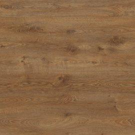 Panele podłogowe Wild Wood HRT AGT PRK908 EFFECT PREMIUM ALTAY AC5 12 mm